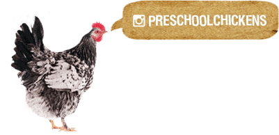 Preschool chickens