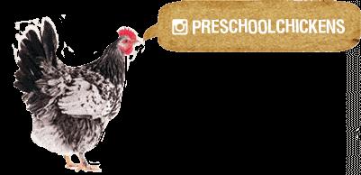 Preschool chickens